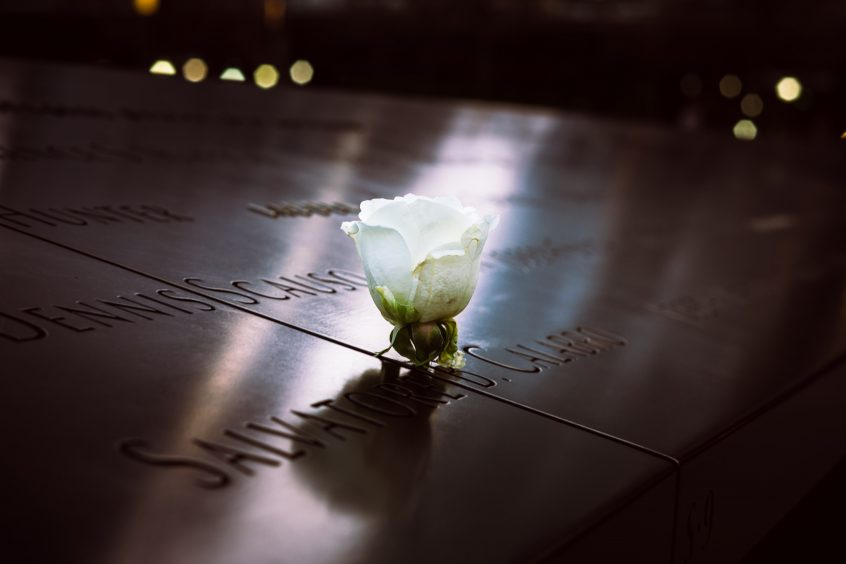 A rose at the September 11, 2001 memorial